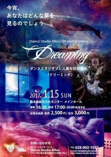 2017-01-15-flyer.jpg